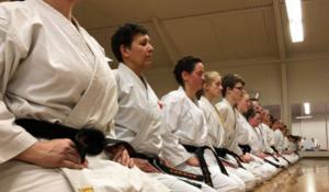 Karate voksne begynder