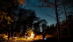 Nat i naturen | Nattevandring v. Grønnessegaard Gods