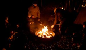 Natteravn | En aften i skoven v. Grønnessegaard Gods